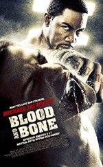 Kan Ve Kemik İzle