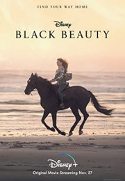 Black Beauty izle