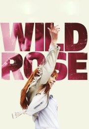 Vahşi Rose izle