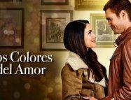 Colors of Love izle